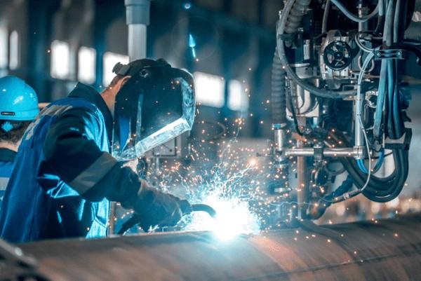 an manufacturing New Zealand